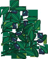 PT olivebranch 01s by eBoy